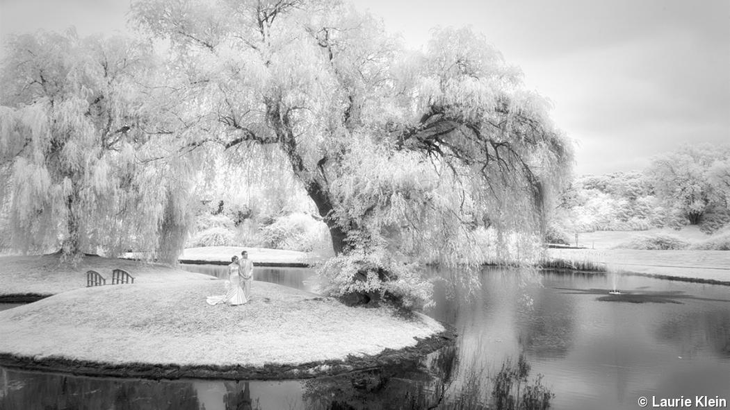 How to sell infrared photography to wedding and portrait clients